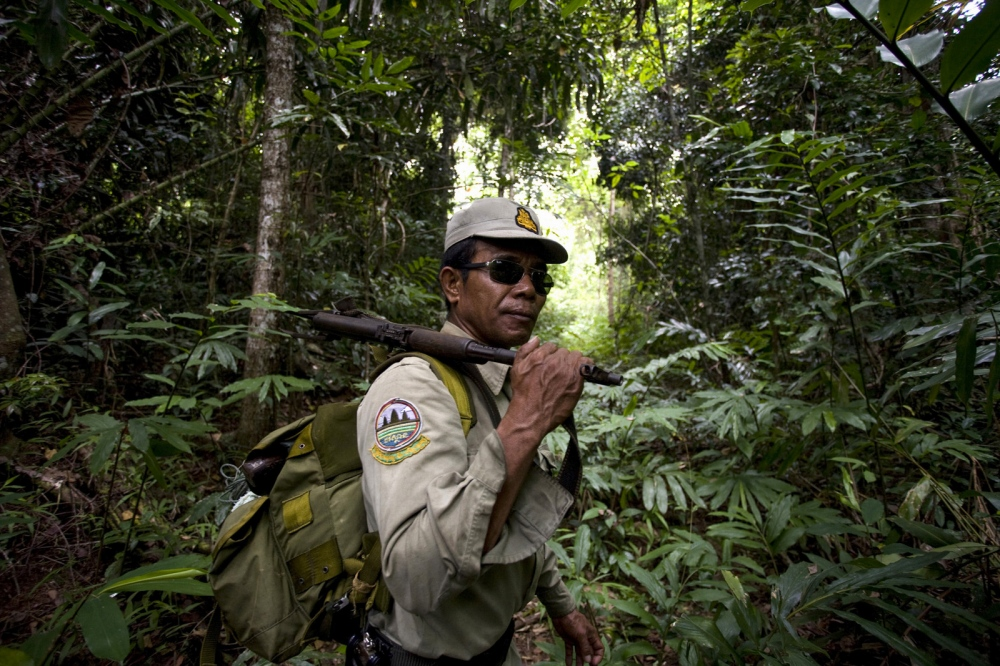 A ranger on patrol in the forest. The forest rangers are employed by the Ministry of Environment but sponsored by Flora and Fauna International who pays them 75% of their salary and provides training and accommodation.  Cardamom Forest - Cambodia