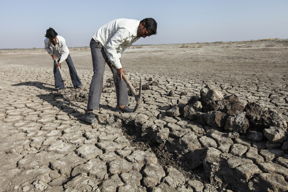 Men dig an irrigation channel in the parched earth at the edge of the Little Rann of Kutch.  Gujarat - India