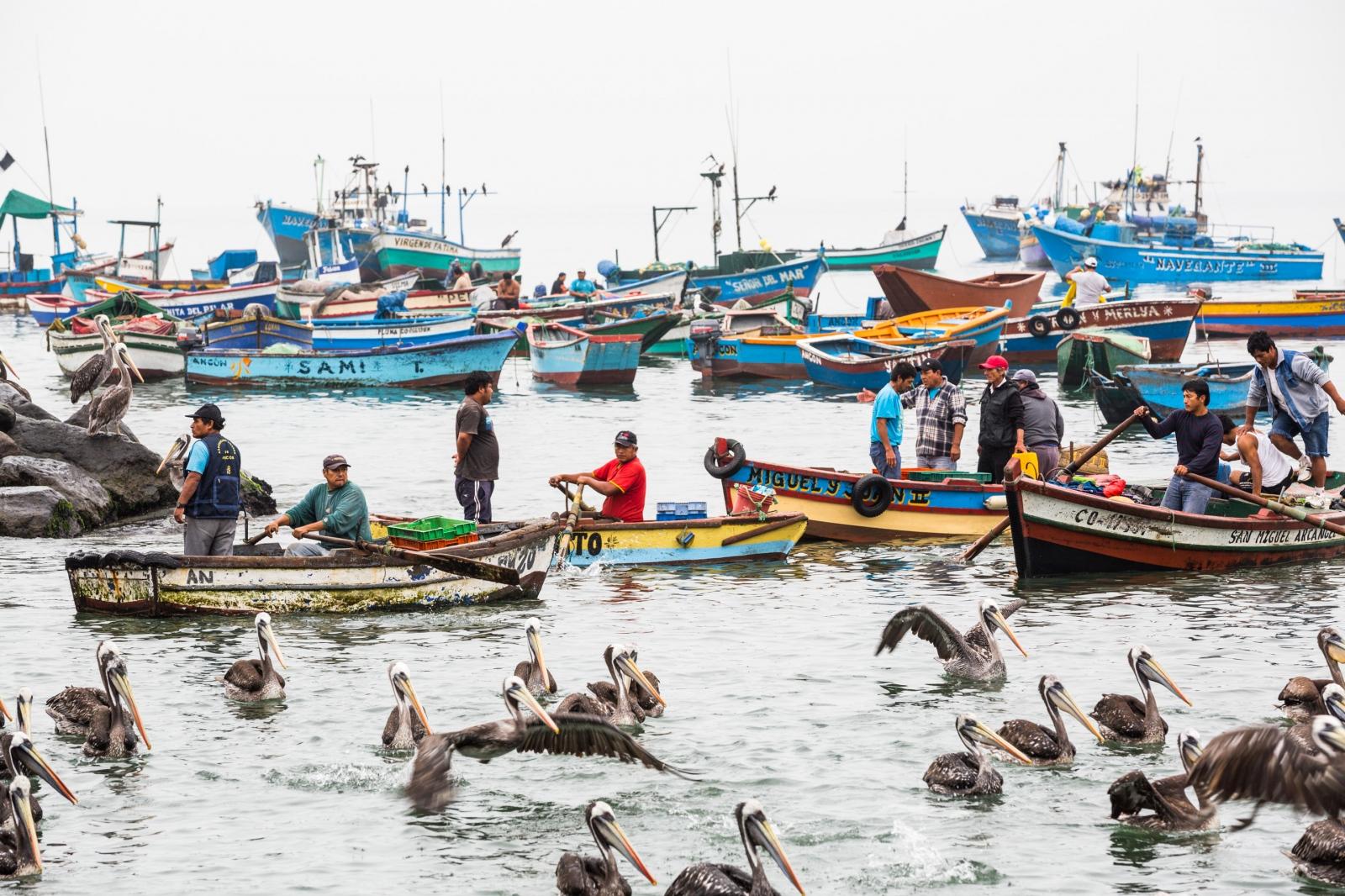 Fishermen. Ancón, Peru.