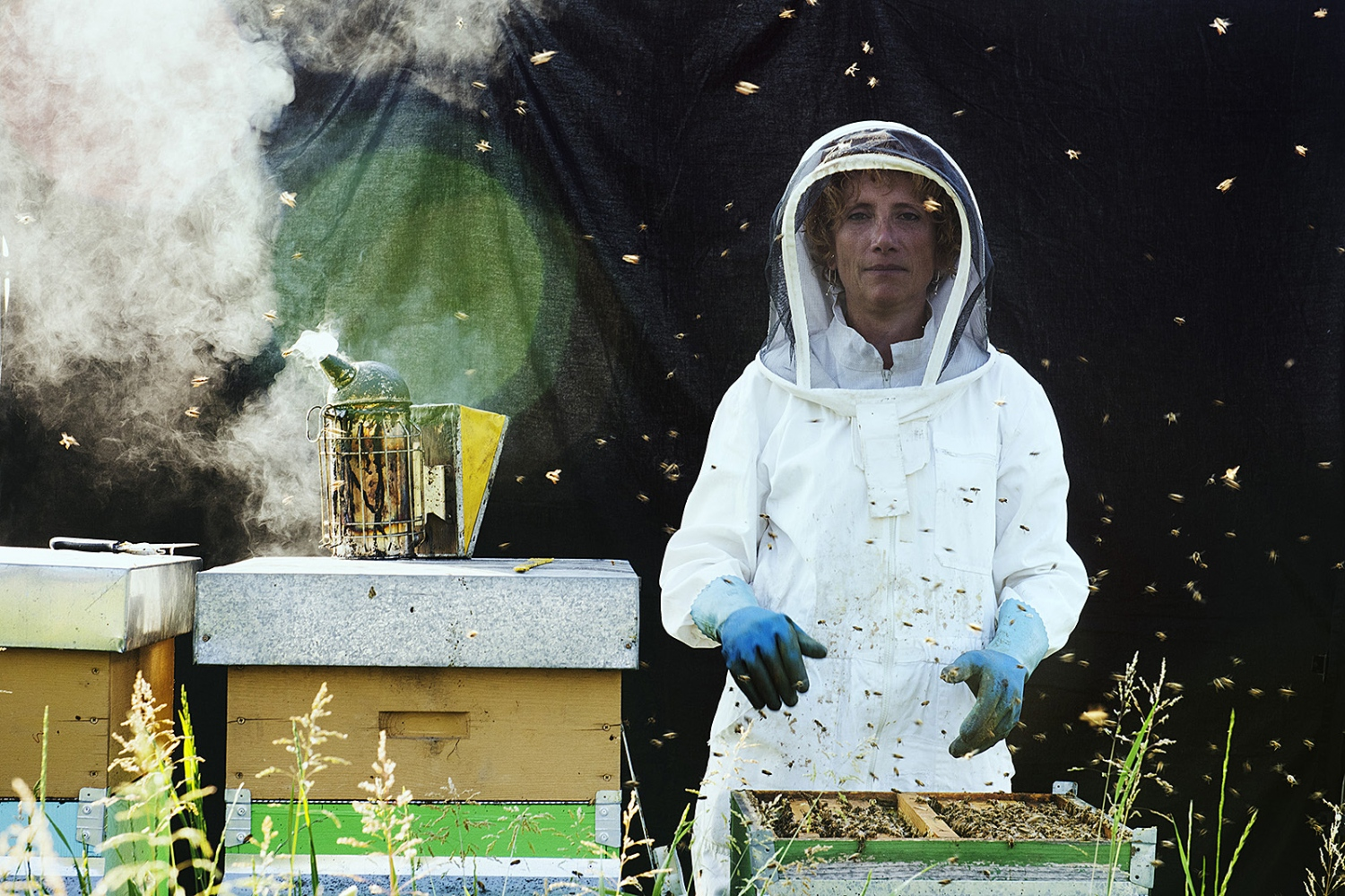 The Bee Sitter in Milan.