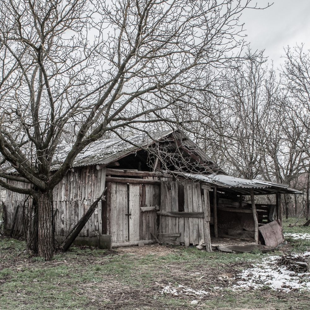 An abandoned house in the village of Zardiantkari, where Ossetians and Georgians checkpoints meet together.