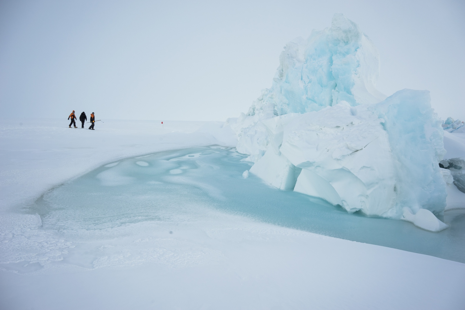 21 November 2015. Scientists and base staff walk through pressure ridges in sea ice just outside of scott base.