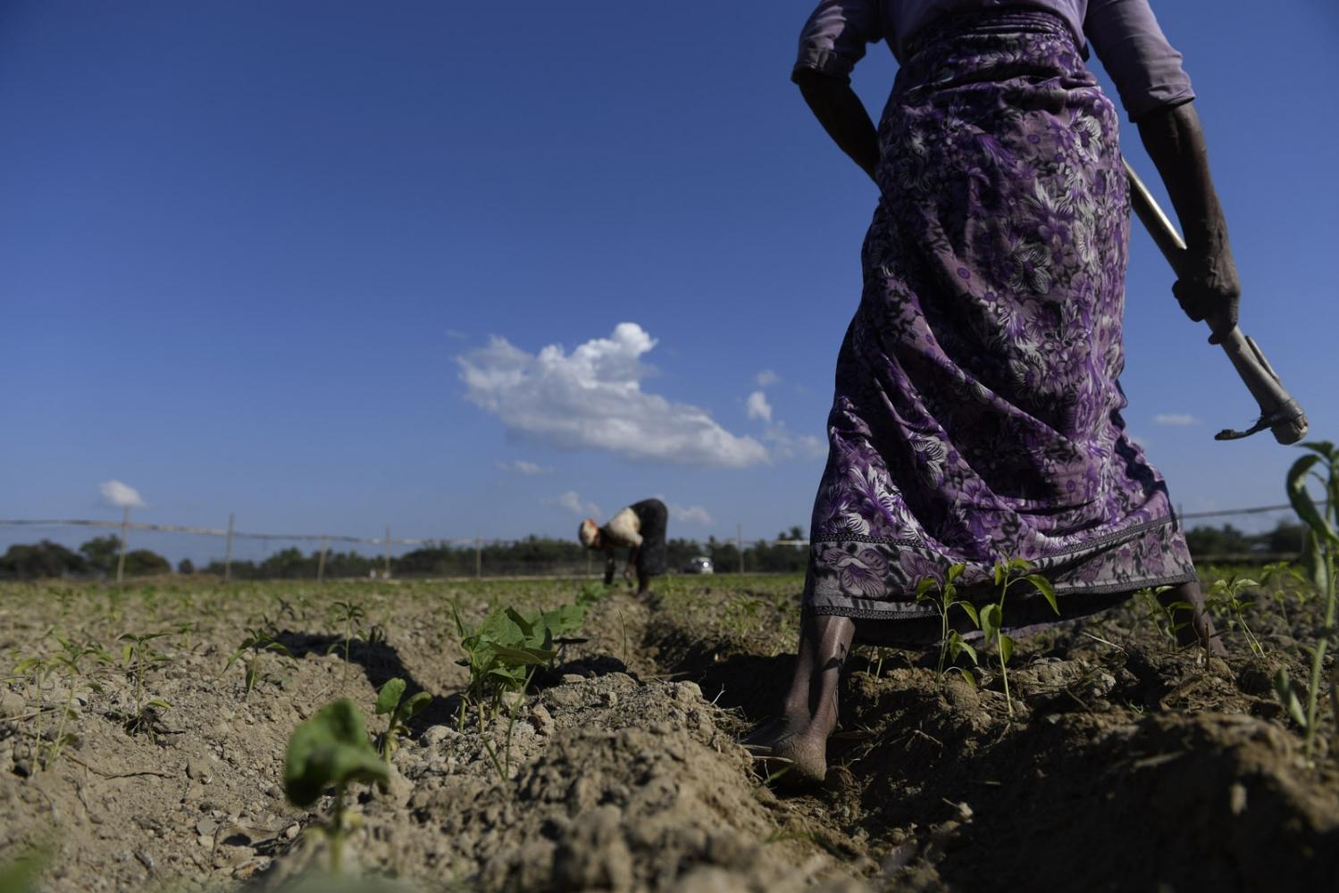 Art and Documentary Photography - Loading Rohingya_11.jpg