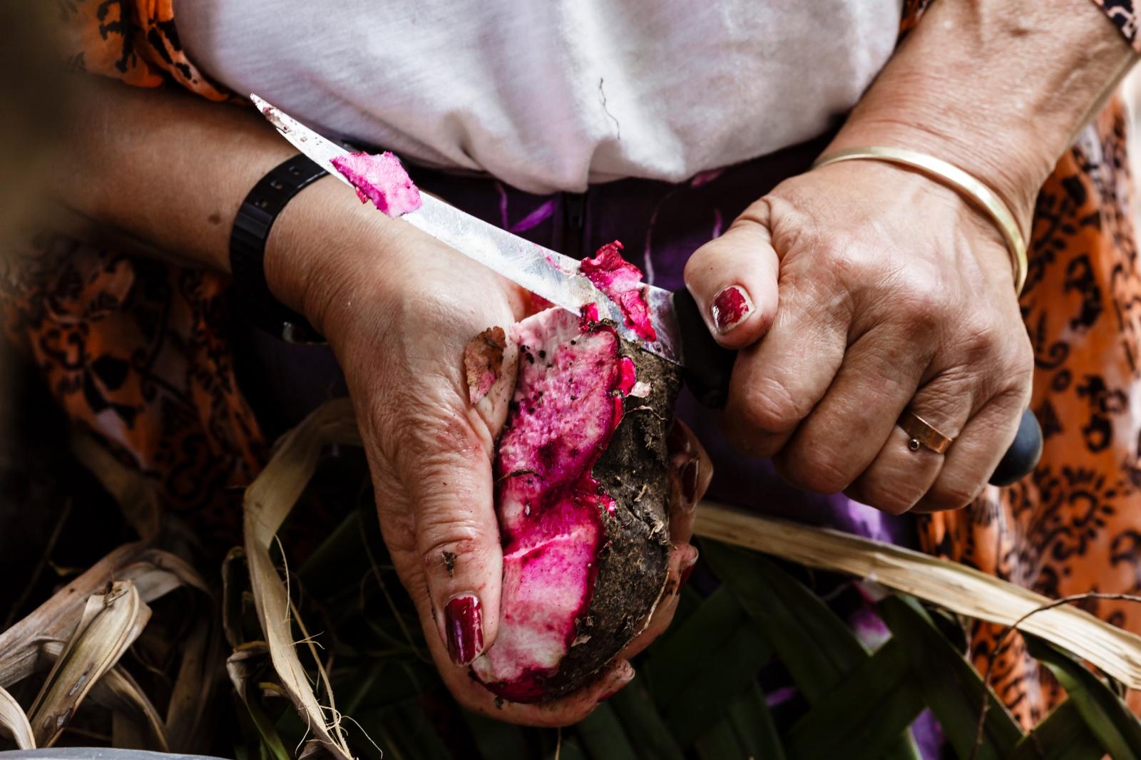 A Tongan woman cuts Hawaiian kumala.