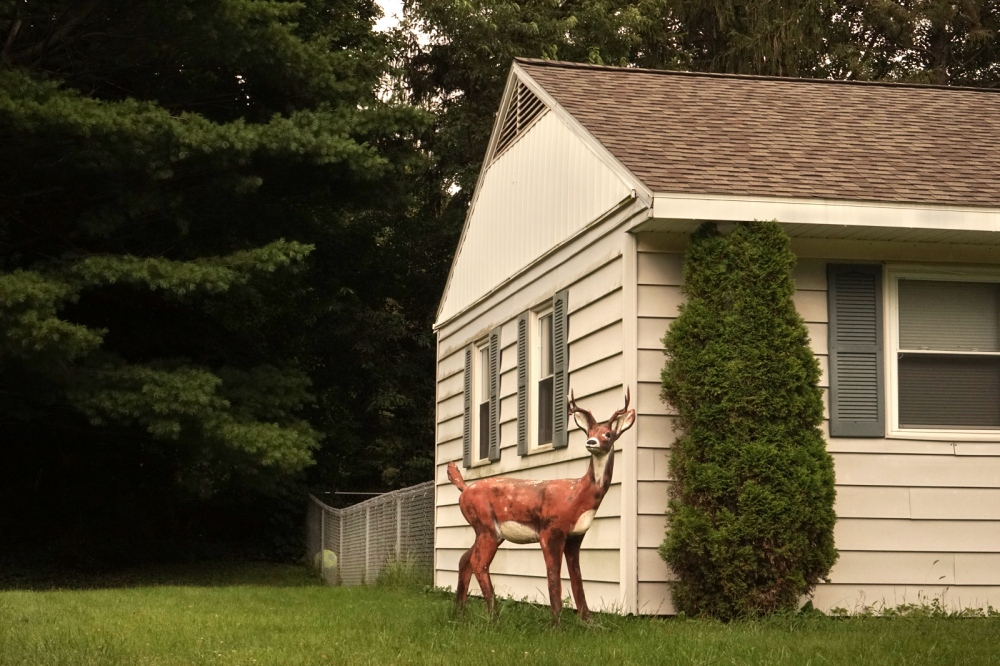 Photography image - Plaster Deer, Clinton, NY, September 2017