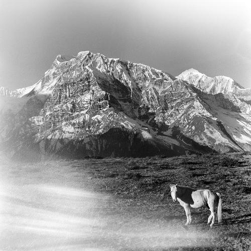 Himalayas VII Annapurna Conservation Area, Nepal 2015