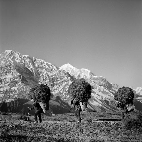 Himalayas VI Annapurna Conservation Area, Nepal 2015