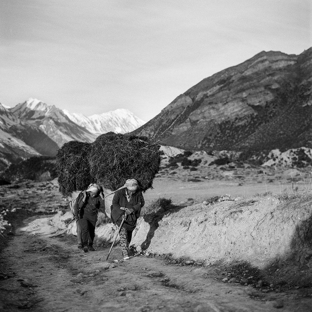 Himalayas V Annapurna Conservation Area, Nepal 2015