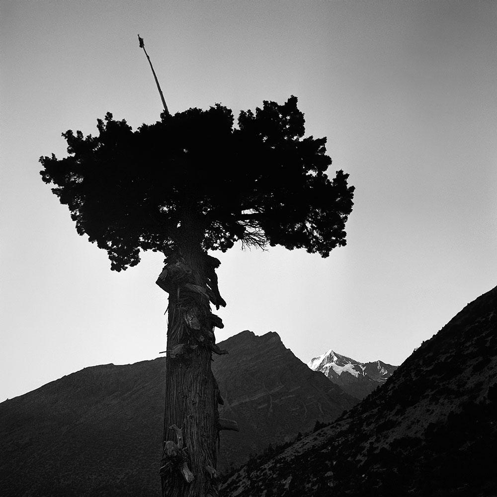 Himalayas XVI Annapurna Conservation Area, Nepal 2015