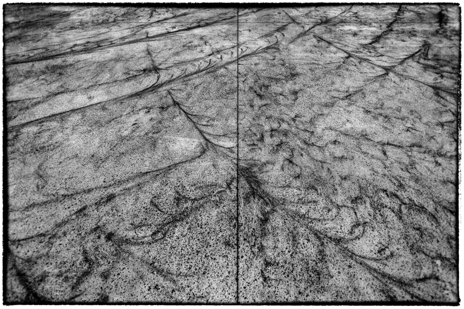 Art and Documentary Photography - Loading CVE-Glaucoma-0003.jpg