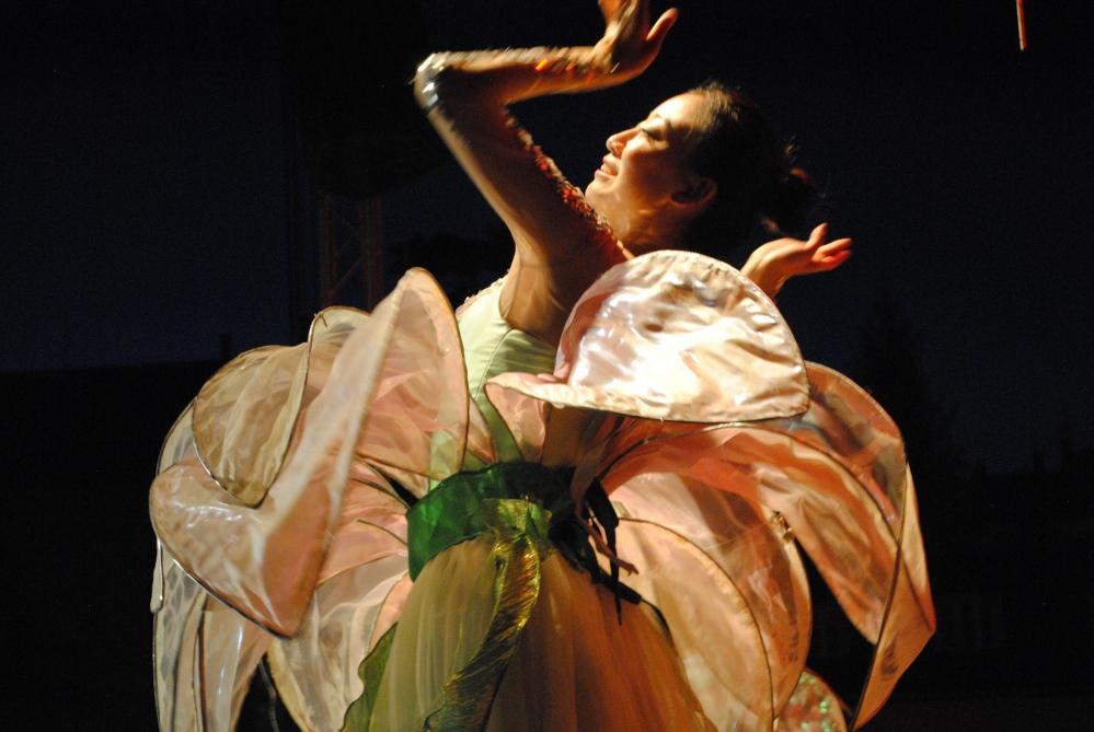 The International Folklore Festival Šumperk