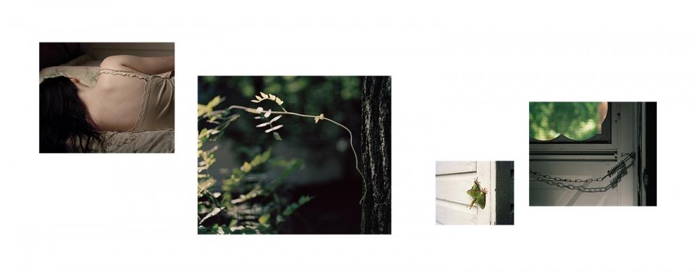 Photography image - Loading Untitled-02.jpg