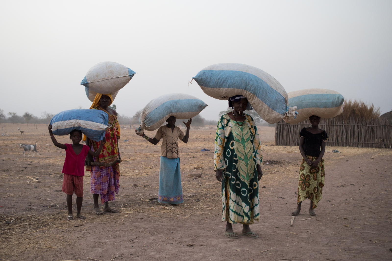 Art and Documentary Photography - Loading Senegal2017_920_February_17__2016-1.jpg