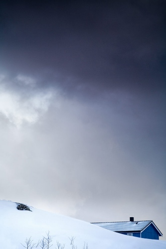 IV - Lofoten Arctic Norway / 2010
