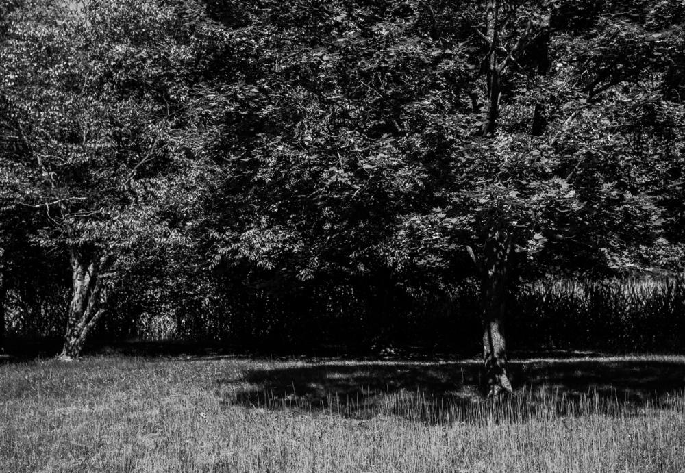 Photography image - Loading 092517_Antietam_186.JPG