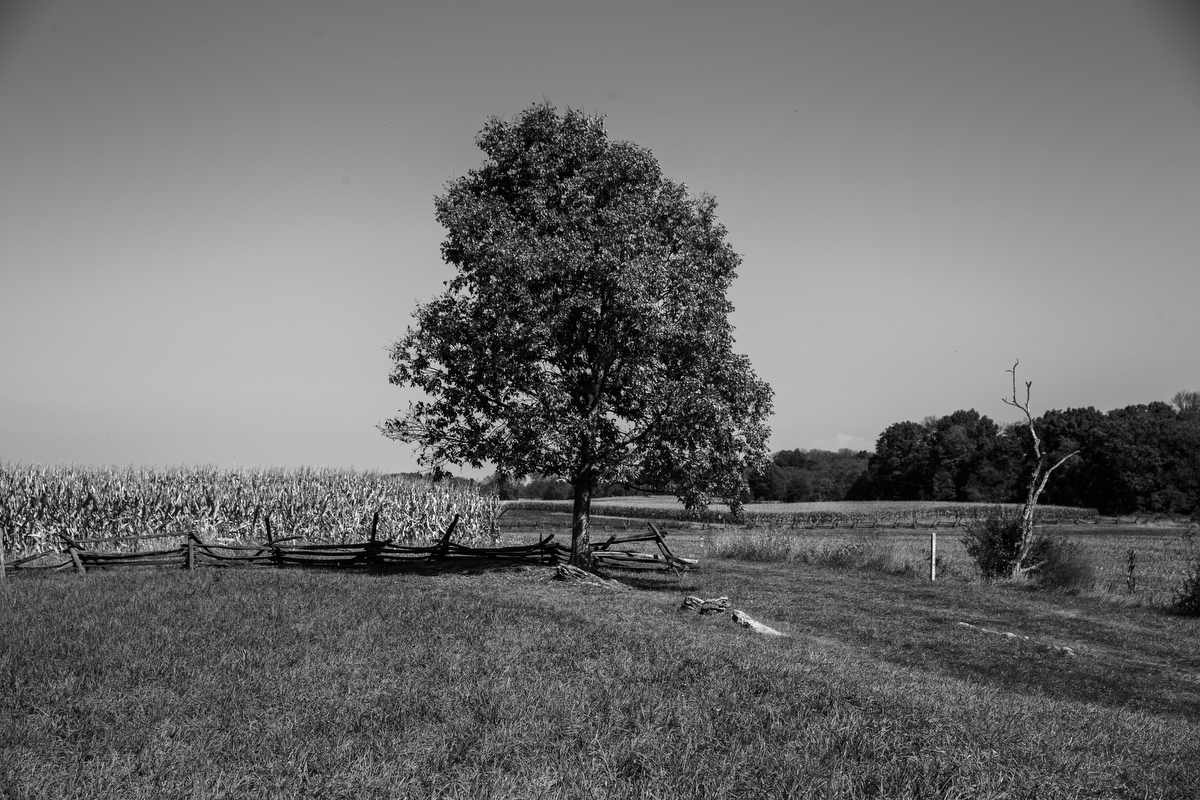 Art and Documentary Photography - Loading 092517_Antietam_237.JPG