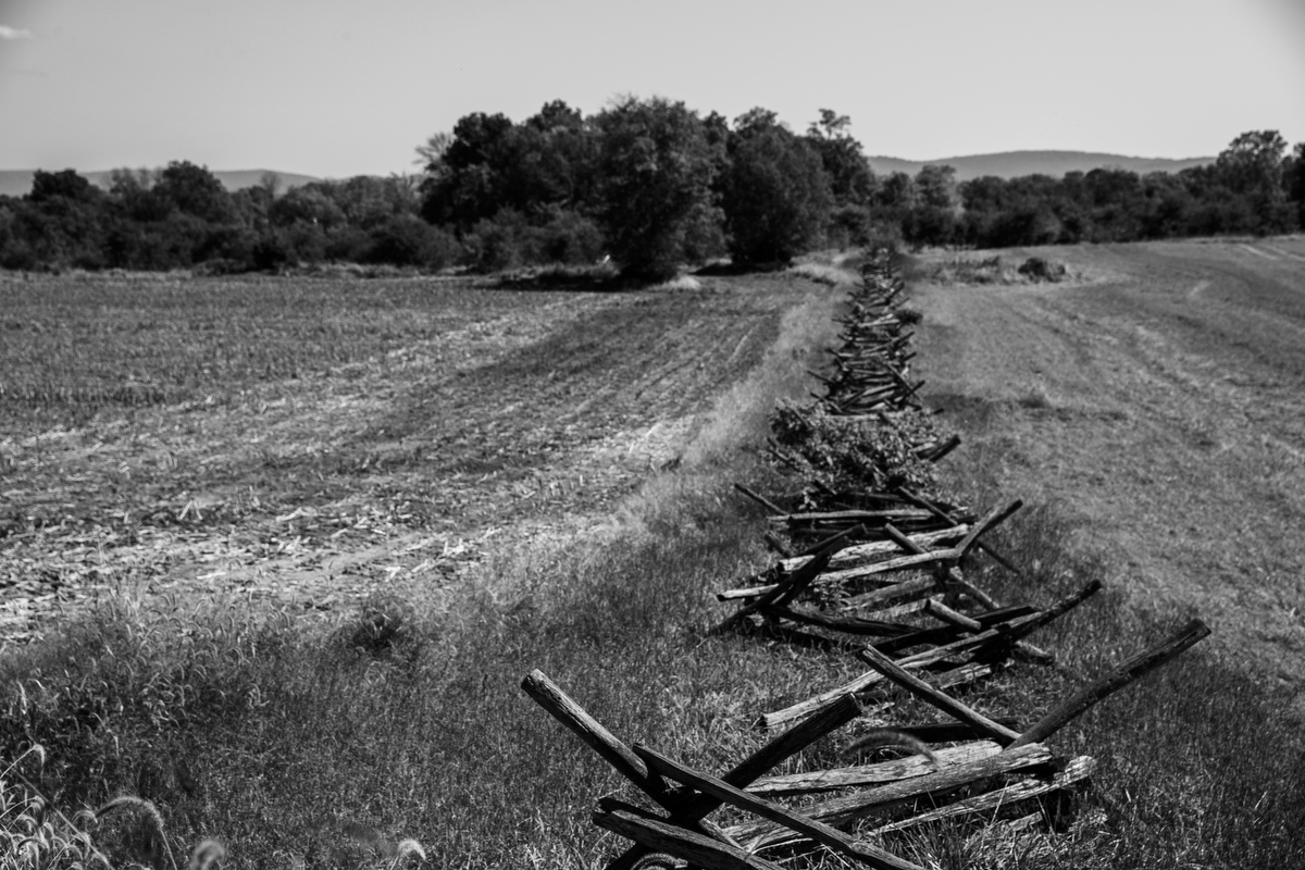 Art and Documentary Photography - Loading 092517_Antietam_274.JPG