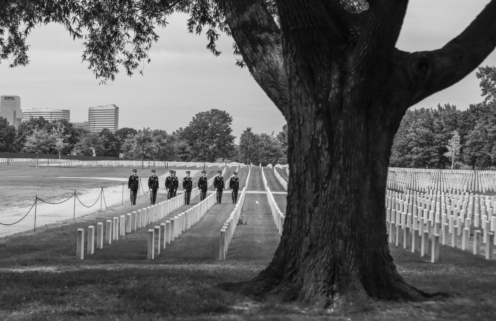 Photography image - Bert Chole's funeral at Arlington National Cemetery. September 22nd 2017 (Photo by Jeremy Hogan)