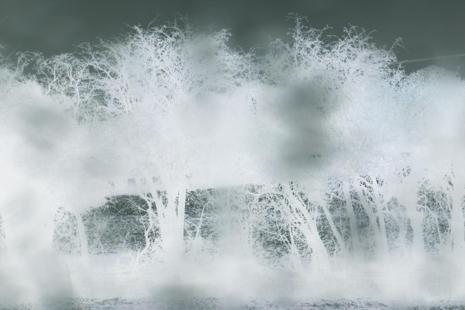 Art and Documentary Photography - Loading Dawn_Watson-23.jpg