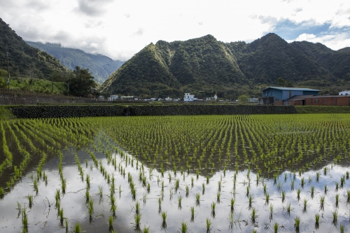 Taiwan: Eat, Pray, Lantern