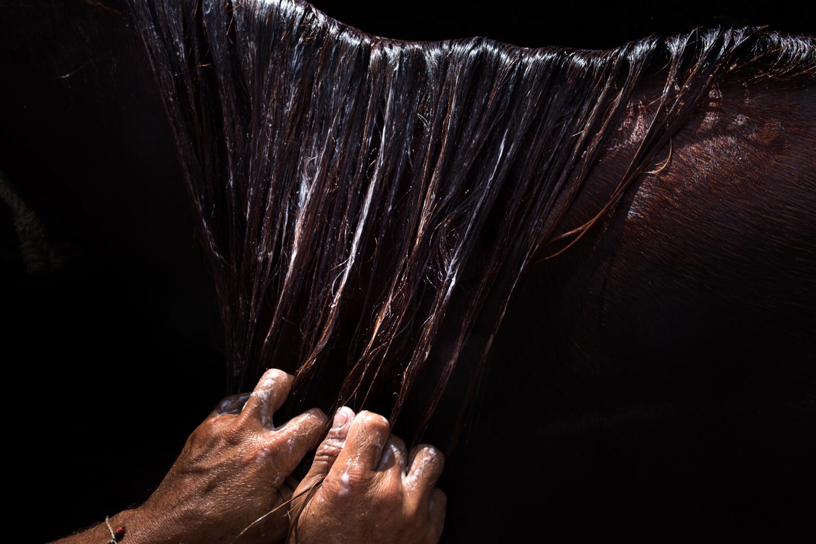 Art and Documentary Photography - Loading 001_Venezuela_WilRiera_Candidate.jpg