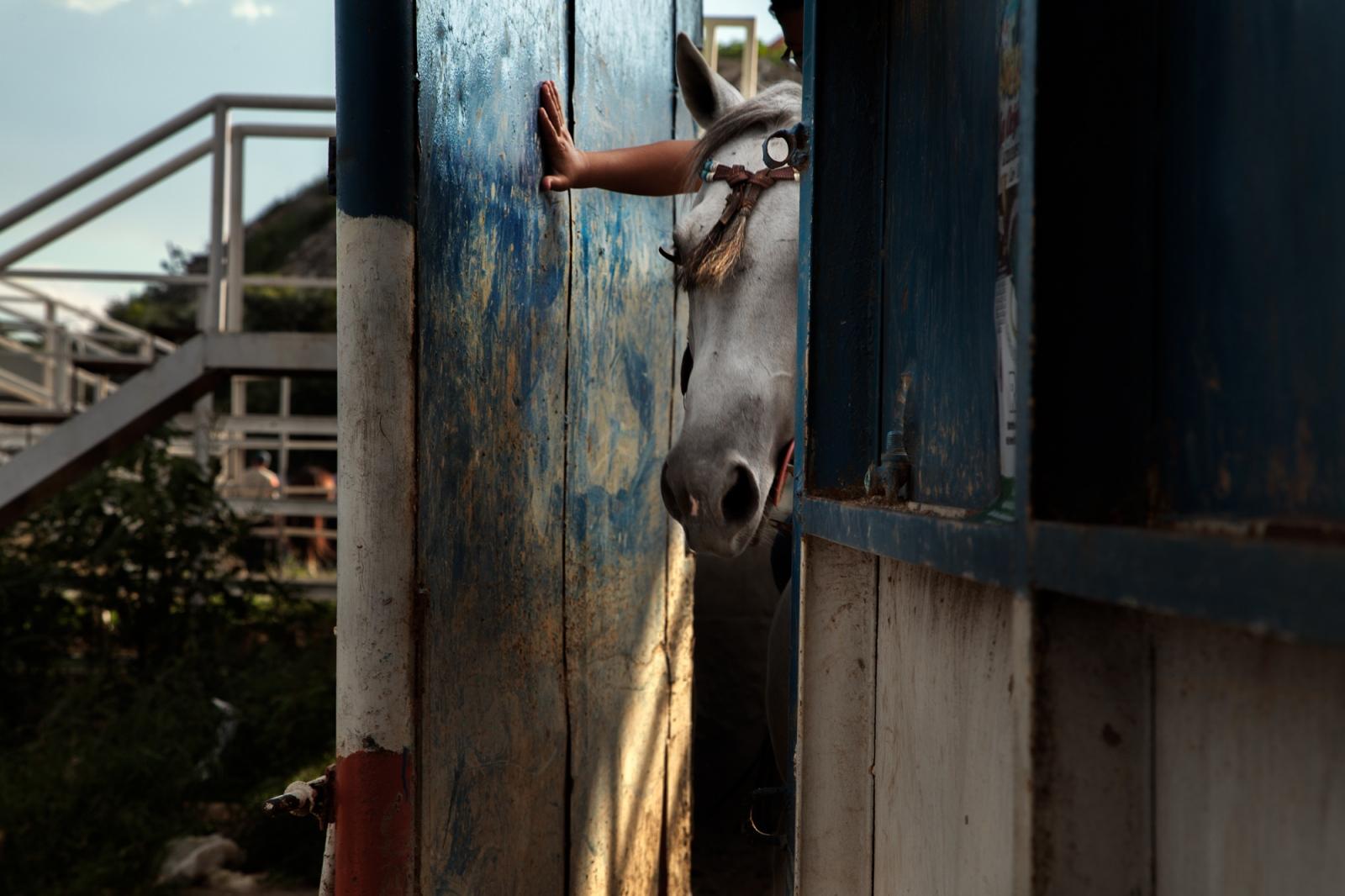 Art and Documentary Photography - Loading 003_Venezuela_WilRiera_Candidate.jpg