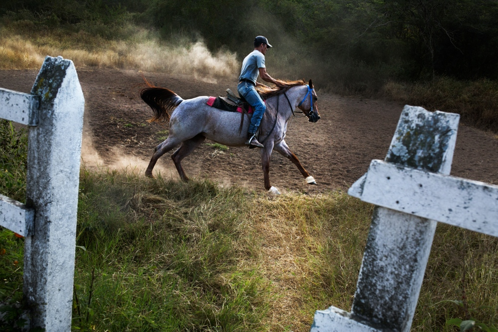 The culture of youth tail riders