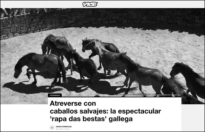 Vice News (Spain) https://www.vice.com/es/article/rapa-besta-caballos-galicia