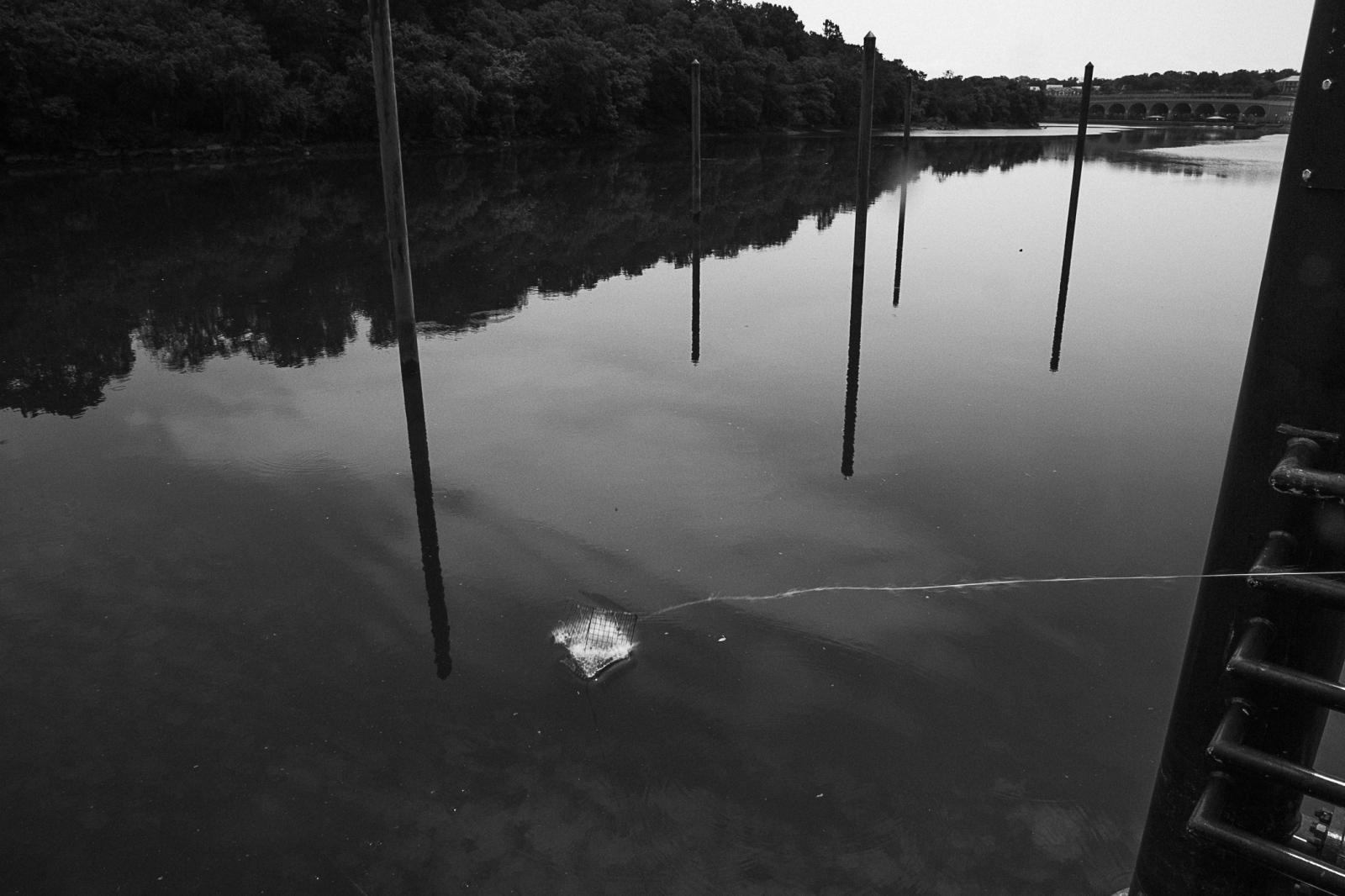 Art and Documentary Photography - Loading SebastianZuletaRios_LenteTrinchera_8Y6A411601722_de_julio_de_2017.jpg
