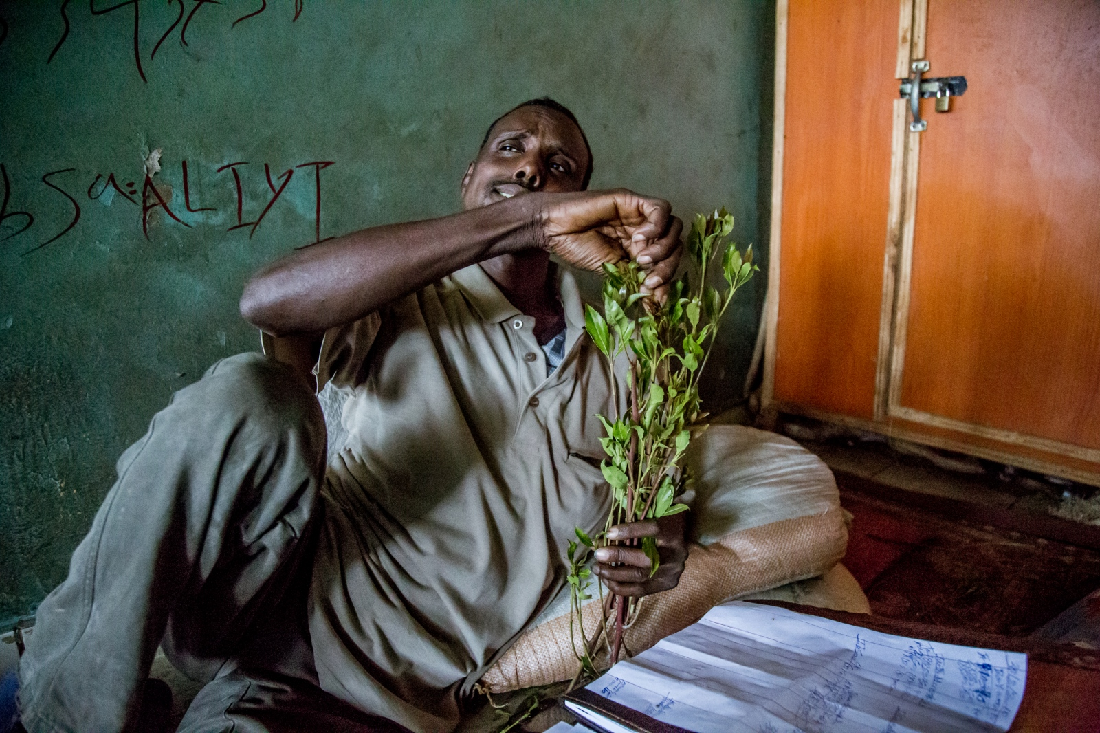 Merchant in his warehouse is chewing khat. Khat contains two alkaloids, cathinone and cathine, which act as stimulants. Users simply chew the green khat leaves, keeping a ball of partially chewed leaves against the inside of their cheek.