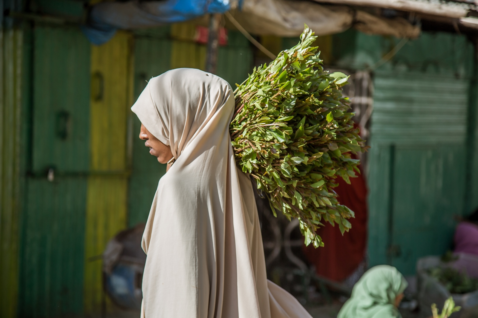 Lady with bundle of fresh khat. The production of khat in Ethiopia has boomed over the last two decades, making the country the world's leading source.