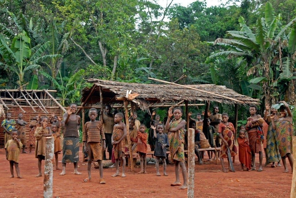The indigenous pygmy population lives in utter poverty, and deforestation is threatening their way of life.