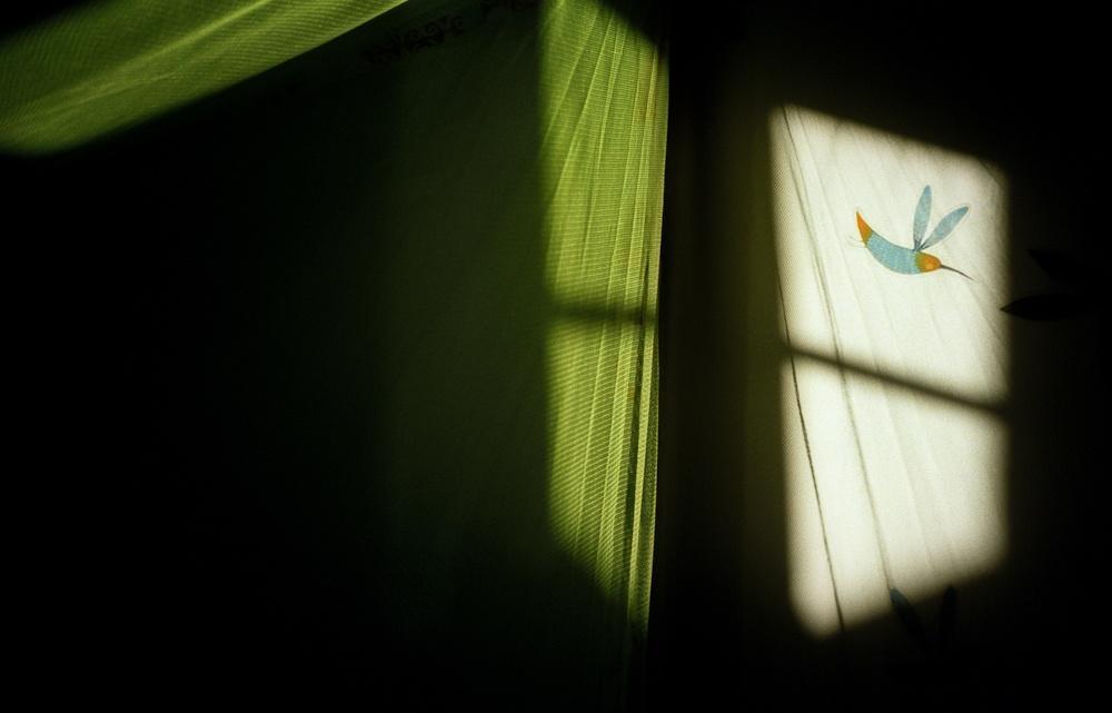 Art and Documentary Photography - Loading jo09.JPG