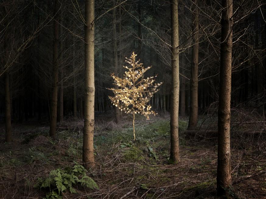 Art and Documentary Photography - Loading Ellie Davies_Smoke and Mirrors 5.jpg