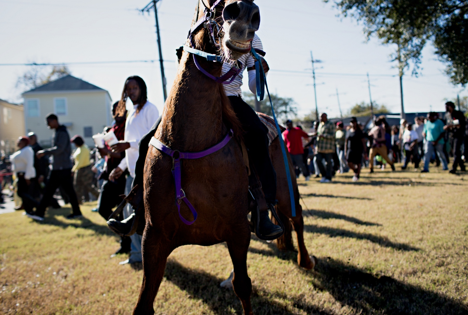Windle rides thirteen year old horse named Lady along the parade. There are several horse clubs that join and ride along side the parade.