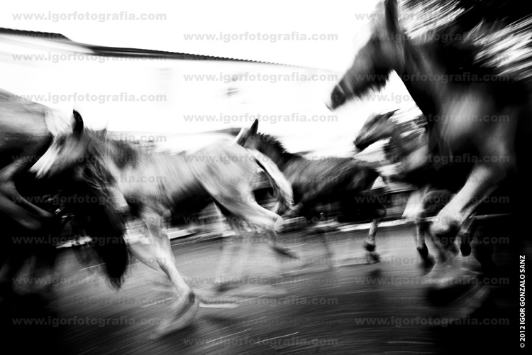 Art and Documentary Photography - Loading 070712IGS_R01.jpg