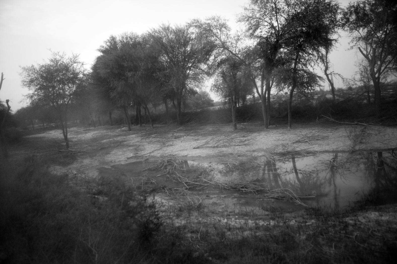 Art and Documentary Photography - Loading 82.jpg