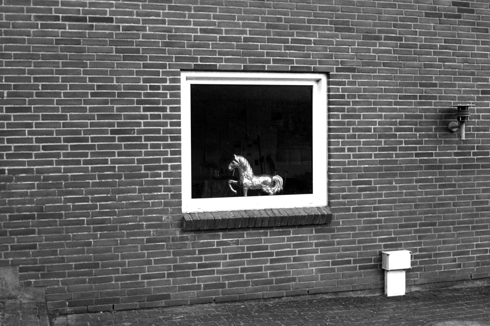 Art and Documentary Photography - Loading (9).JPG