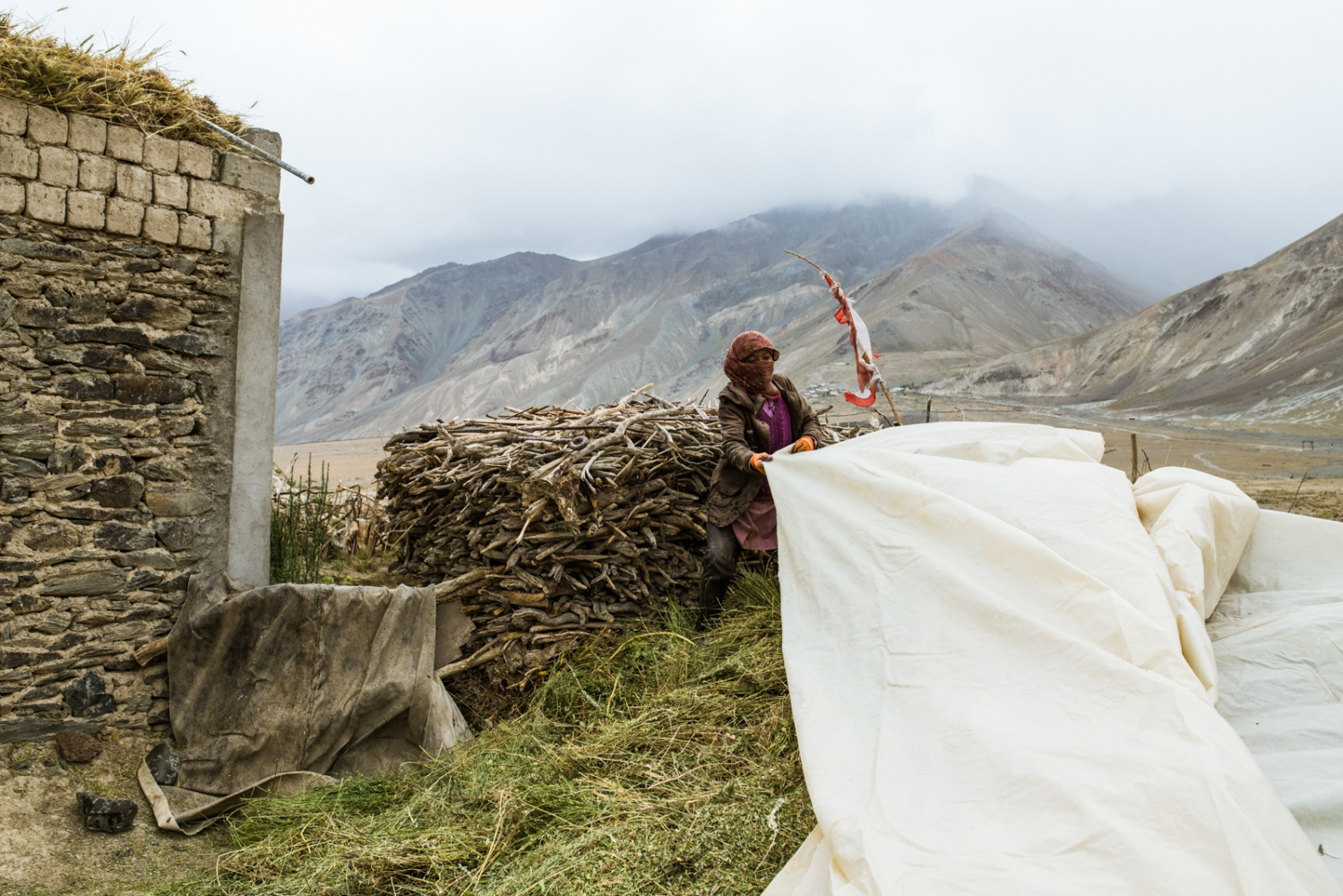 A woman of Lower Kumik covers her fodder harvest and prepares for summer rain that never came.