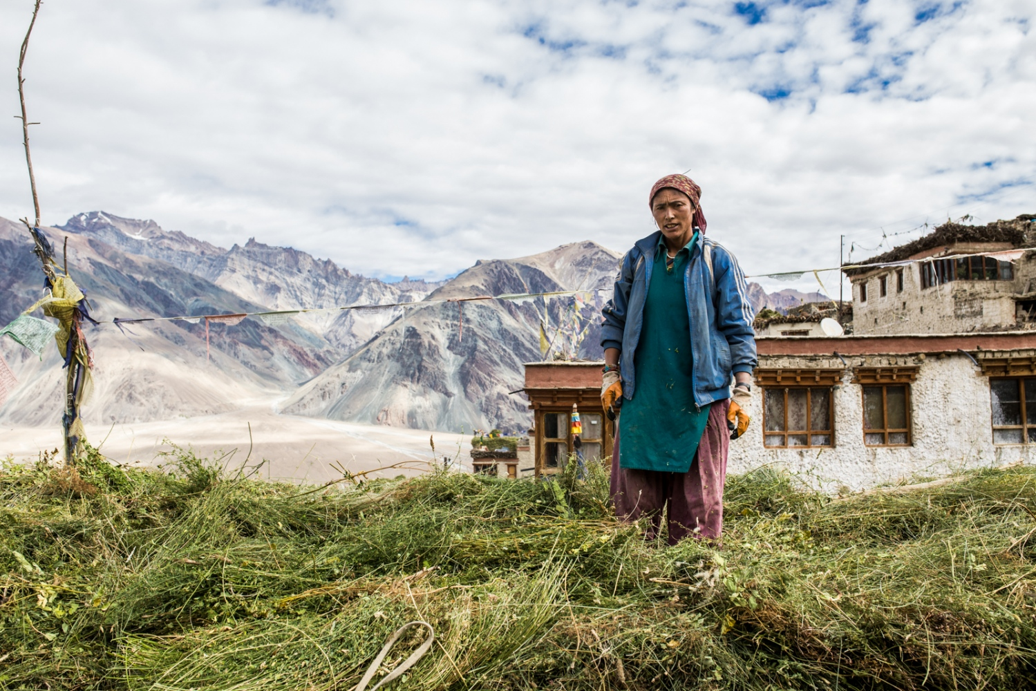 Tsewang Zangmo stands on her roof amongst harvested fodder crops for the livestock.