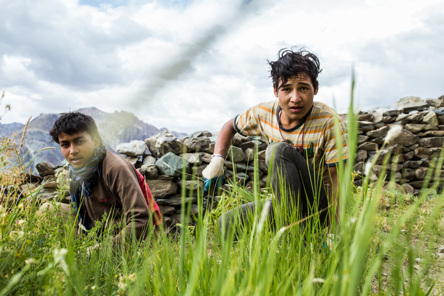 Young Nepali migrant workers hired to help tend to the farmland over the summer due to a shortage of young people in the village. Most young people of Kumik are studying in large Indian cities such as New Delhi and Jammu.