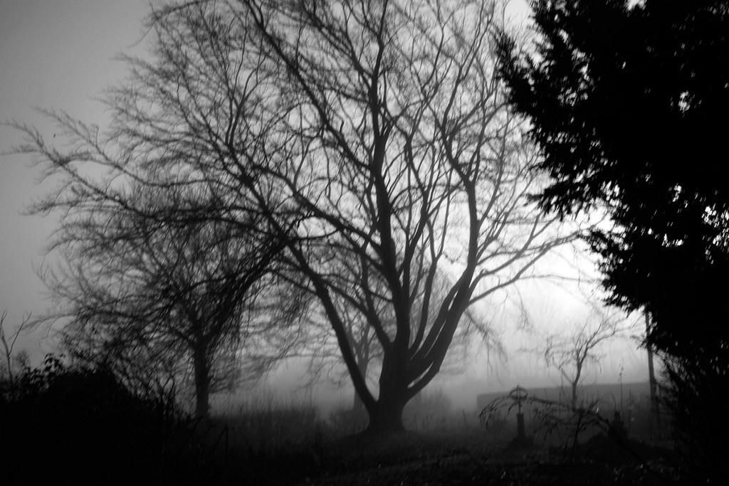 Art and Documentary Photography - Loading Jabbari_Sarah_06.jpg
