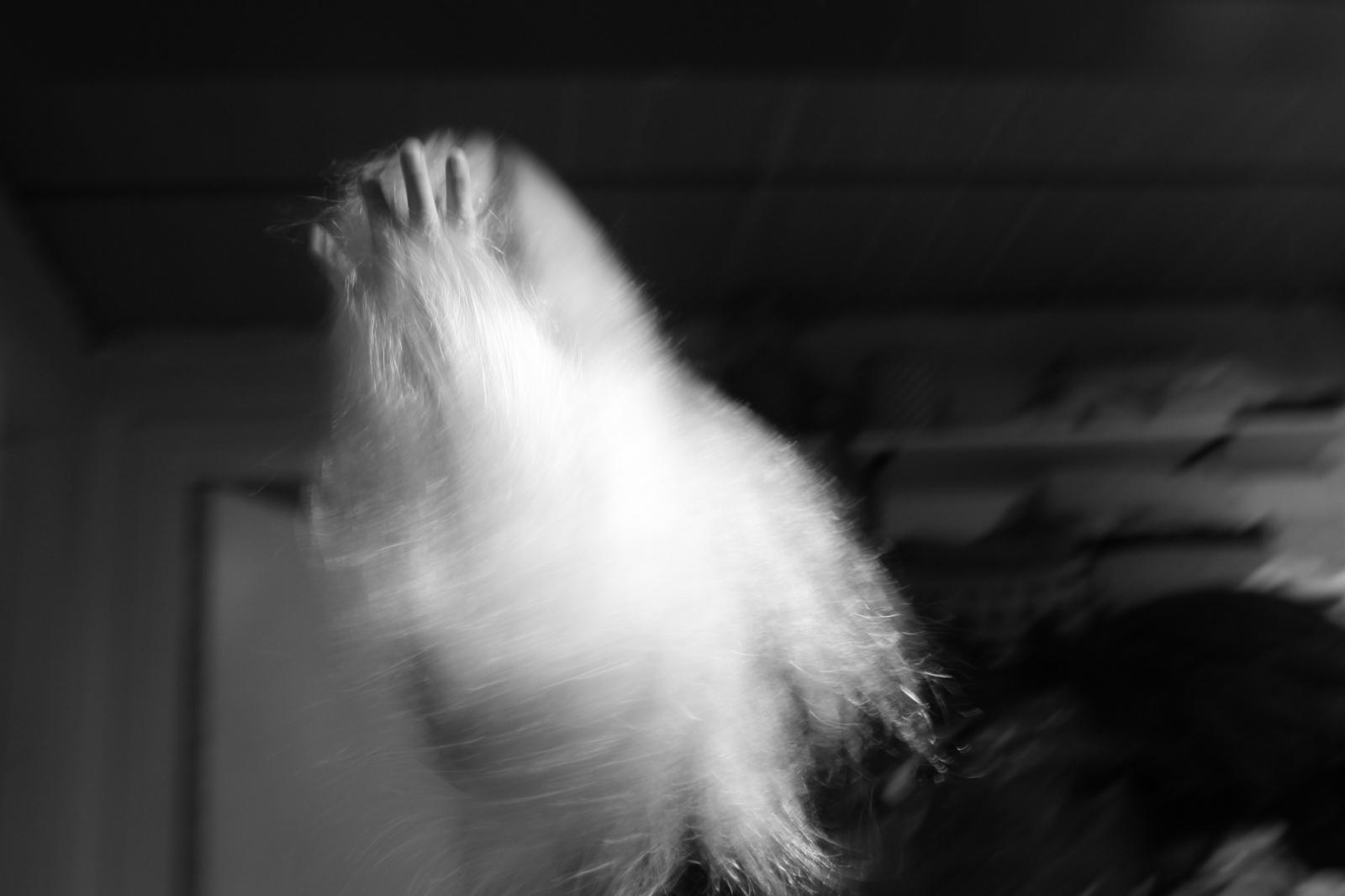 Art and Documentary Photography - Loading Jabbari_Sarah_08.JPG