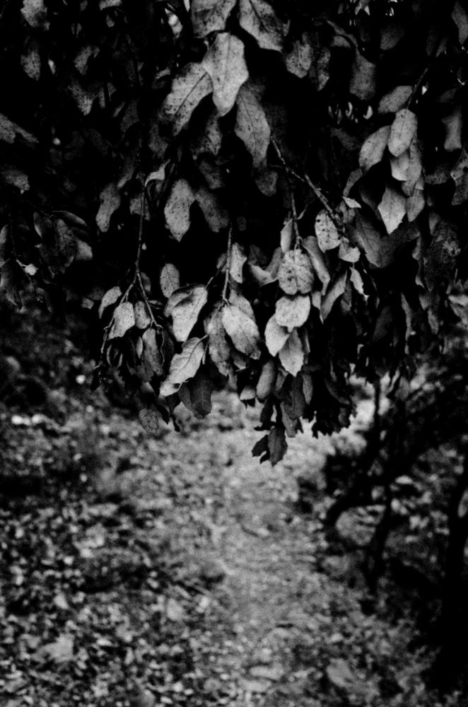 Art and Documentary Photography - Loading Vita-14.jpg