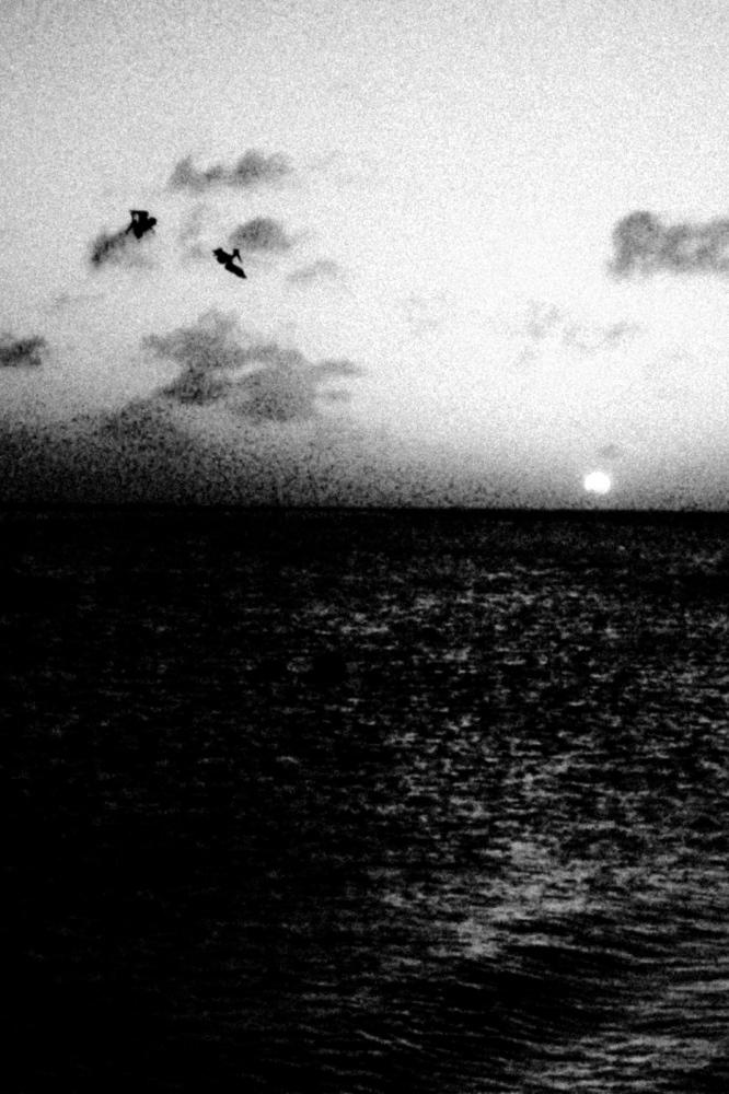 Art and Documentary Photography - Loading Vita-12.jpg