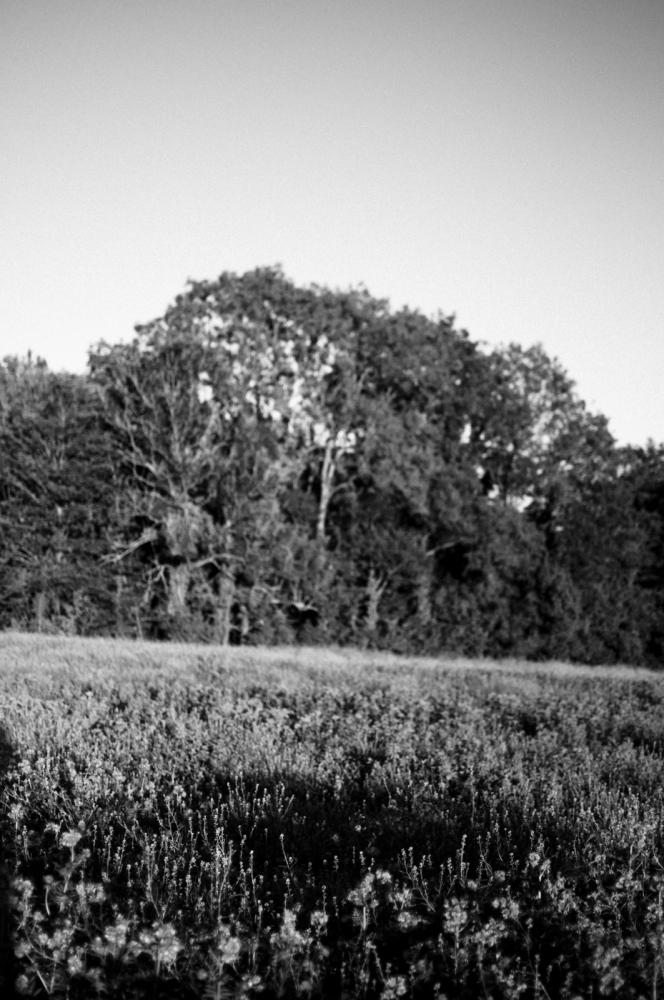 Art and Documentary Photography - Loading Vita-9.jpg