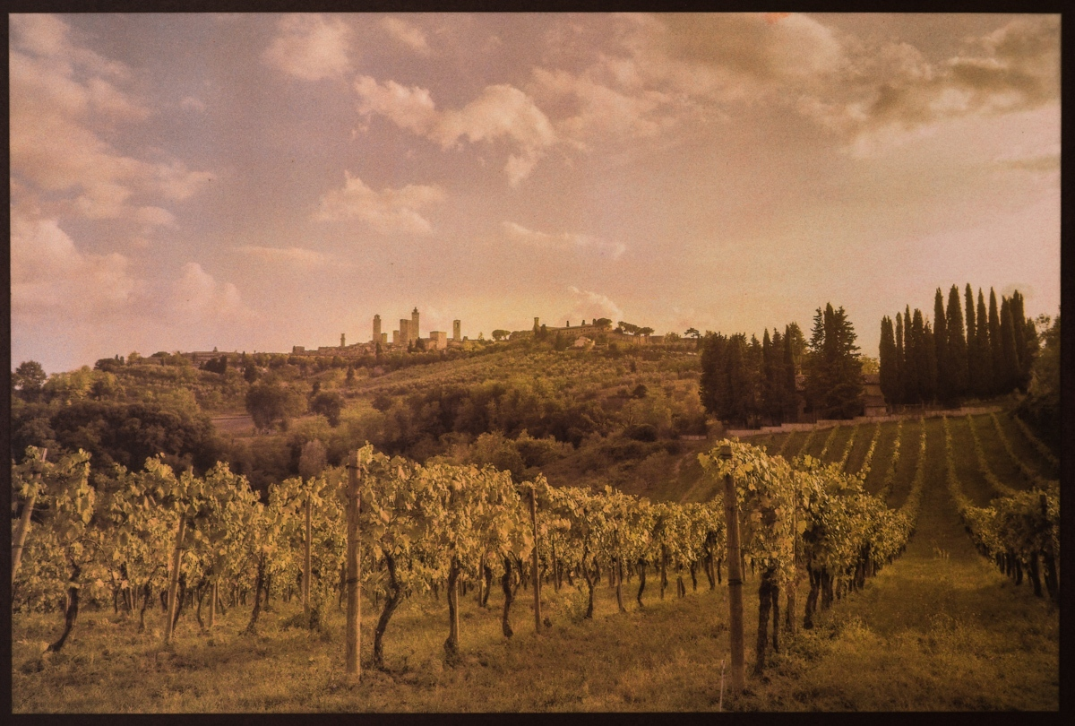 Art and Documentary Photography - Loading San_Gimignano__Early_Autumn_DSC02149.jpg