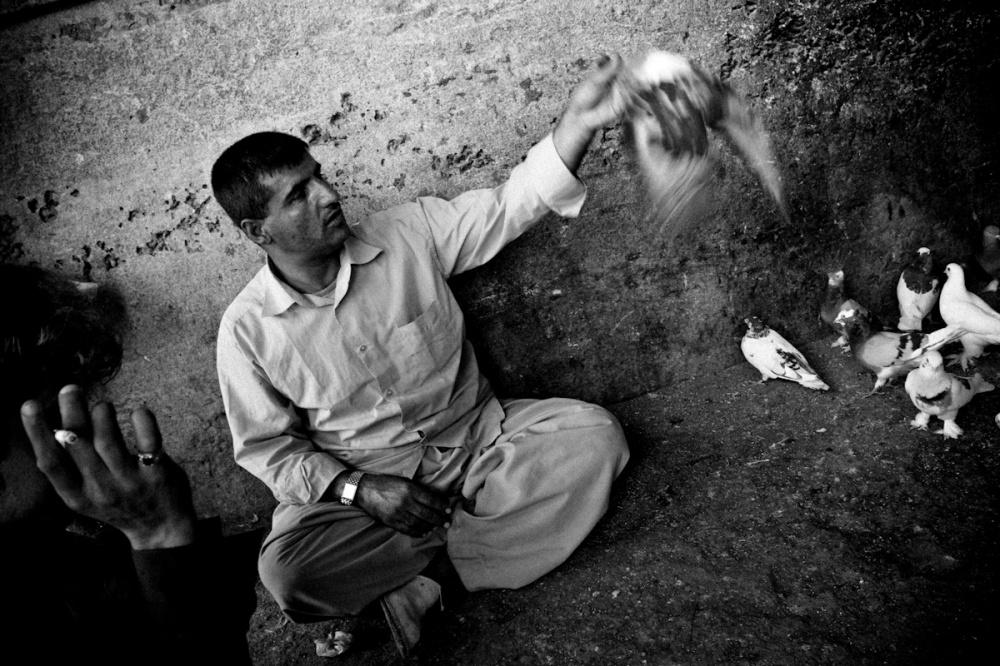 Art and Documentary Photography - Loading Iraq_Visura_33.jpg