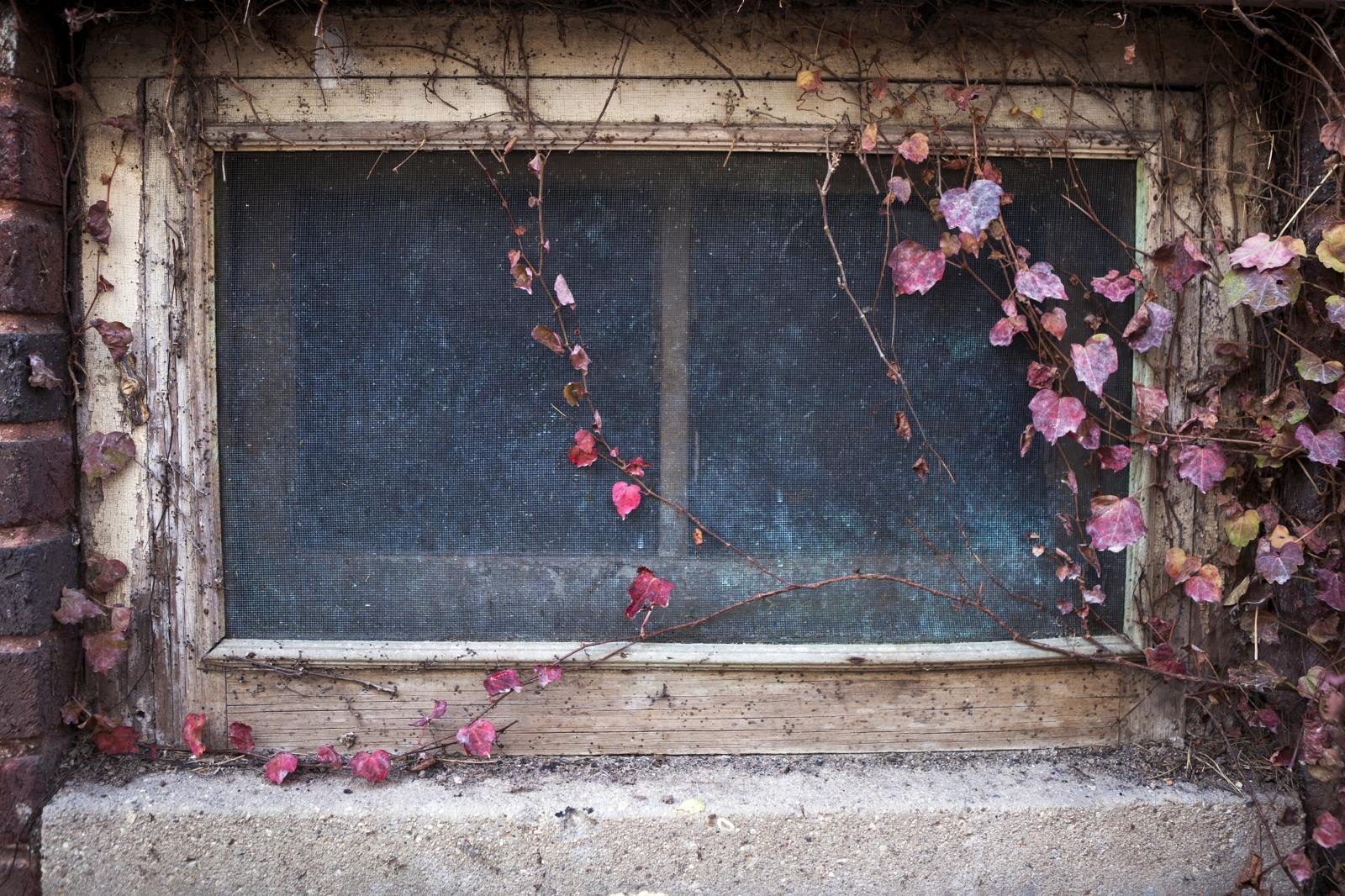 Art and Documentary Photography - Loading IMG_7972susan.jpg