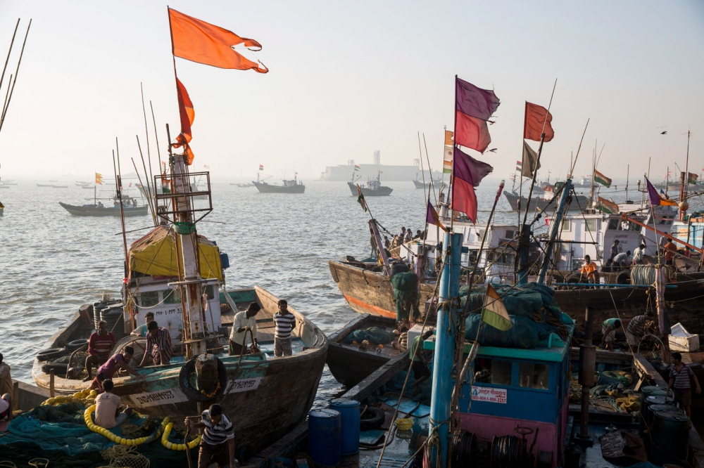 Early morning activities as fishing boats unload their catch at Sassoon Docks in Southern Mumbai. One of the oldest docks in the city and was built in 1875 on reclaimed land by the banking and mercantile company David Sassoon & Co. It was the first commercial wet dock in western India and helped establish the cotton trade. Mumbai, India